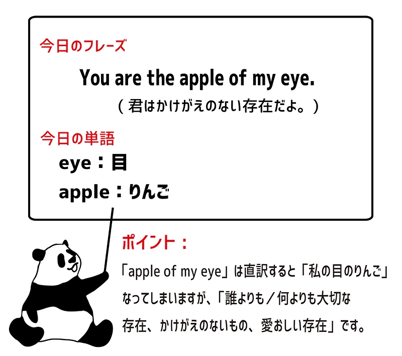 apple of one's eyeのフレーズ