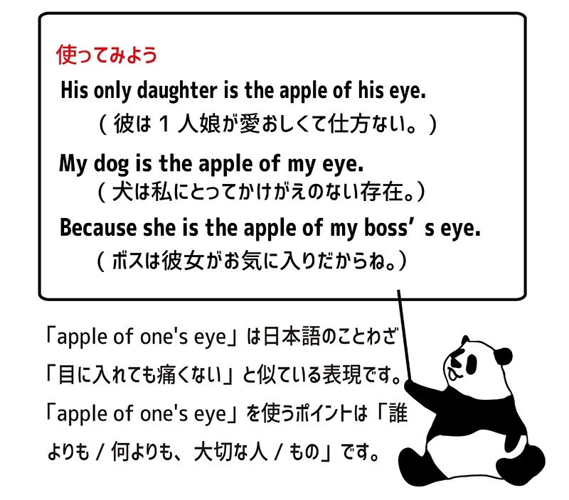 apple of one's eyeの使い方