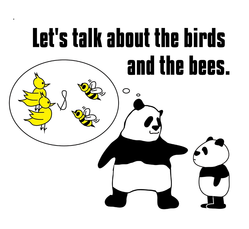 the birds and the beesのパンダの絵