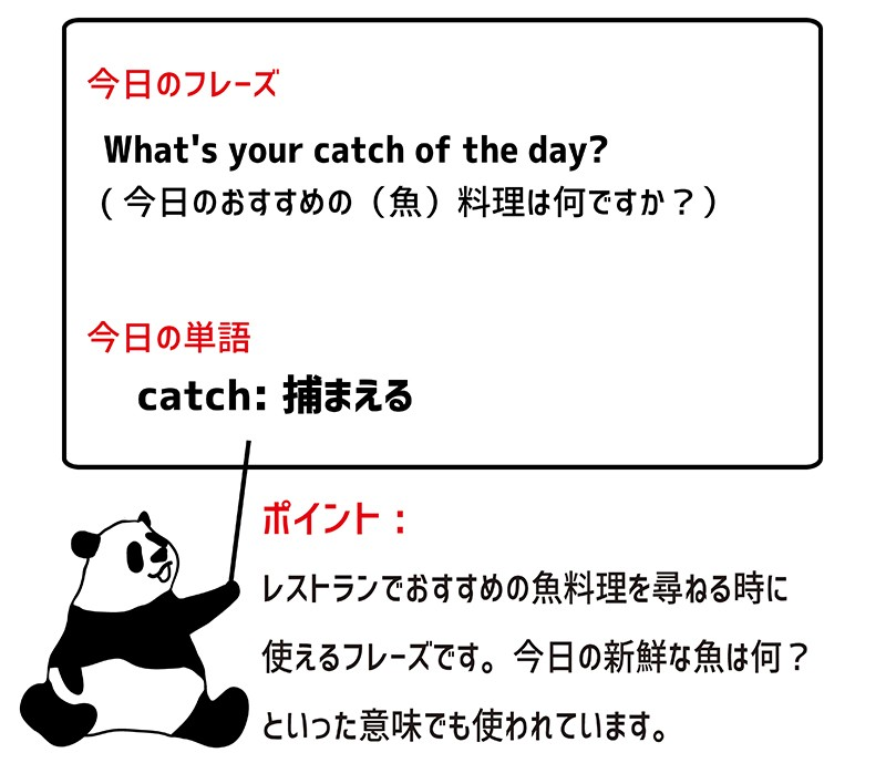catch of the dayのフレーズ