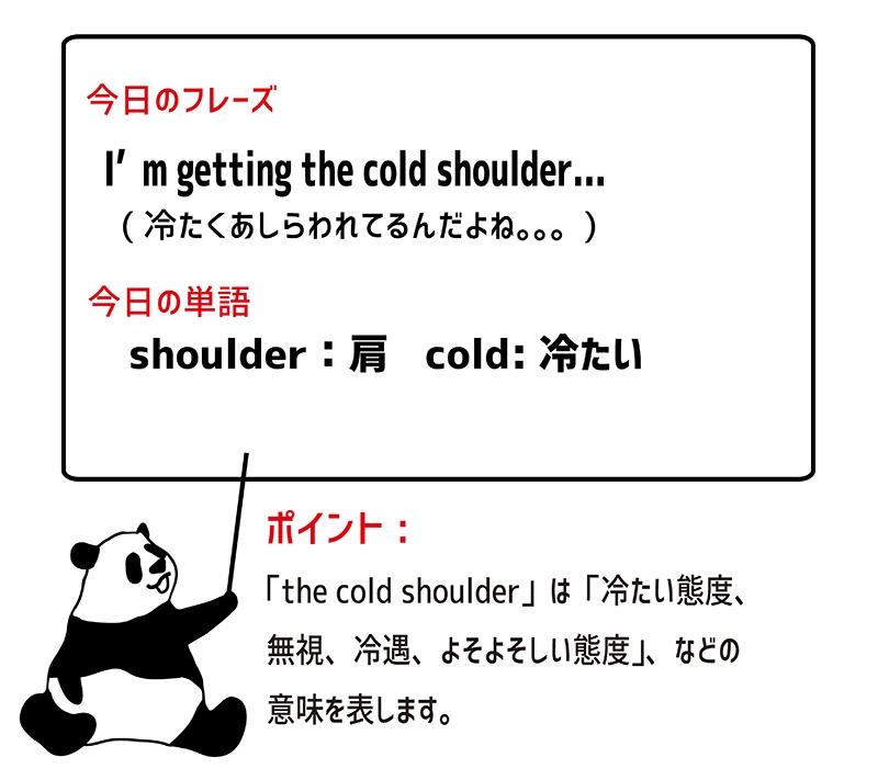 get the cold shoulderのフレーズ