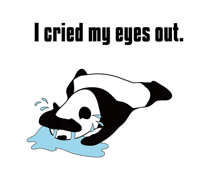 cry my eyes outのパンダの絵