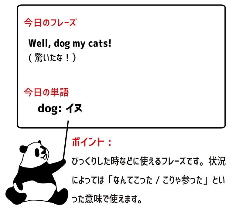 dog my catsのフレーズ