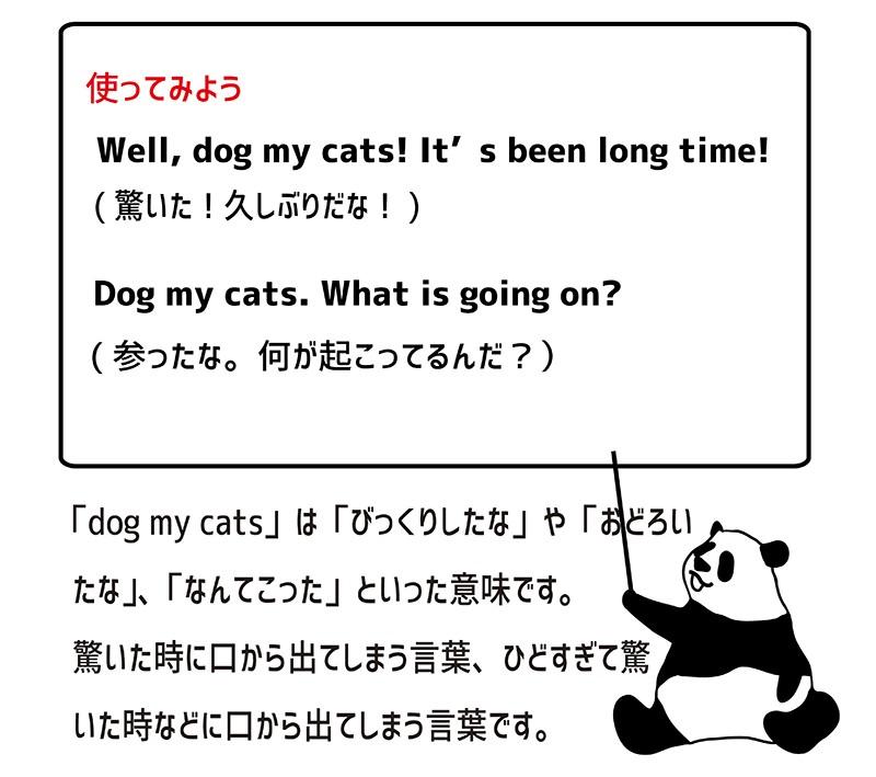 dog my catsの使い方