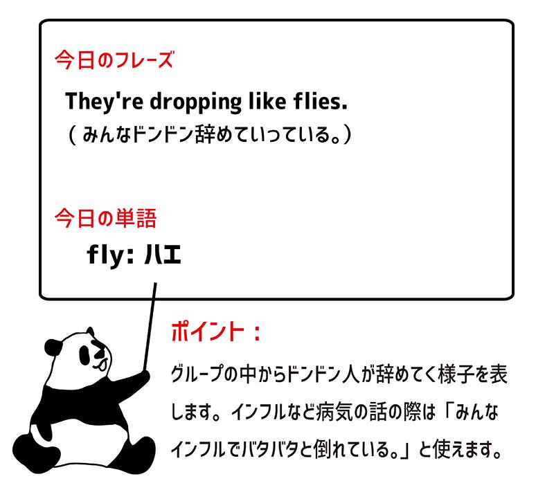 drop like fliesのフレーズ