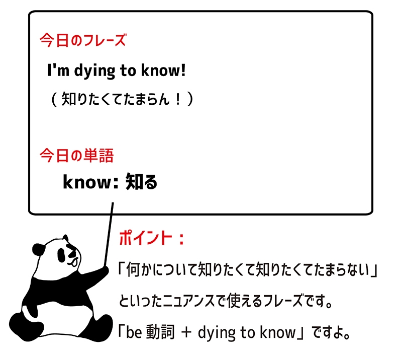 dying to know のフレーズ