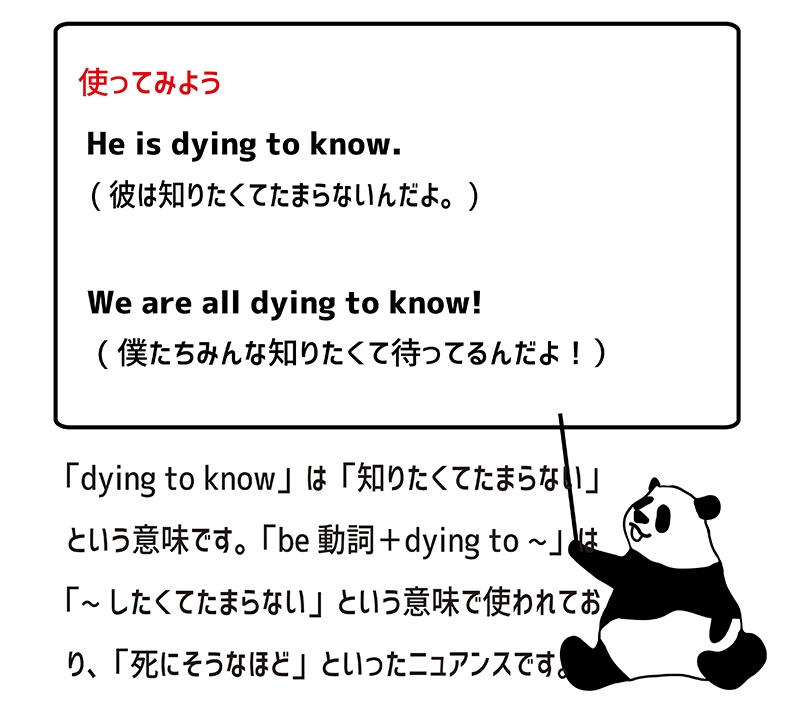 dying to know の使い方