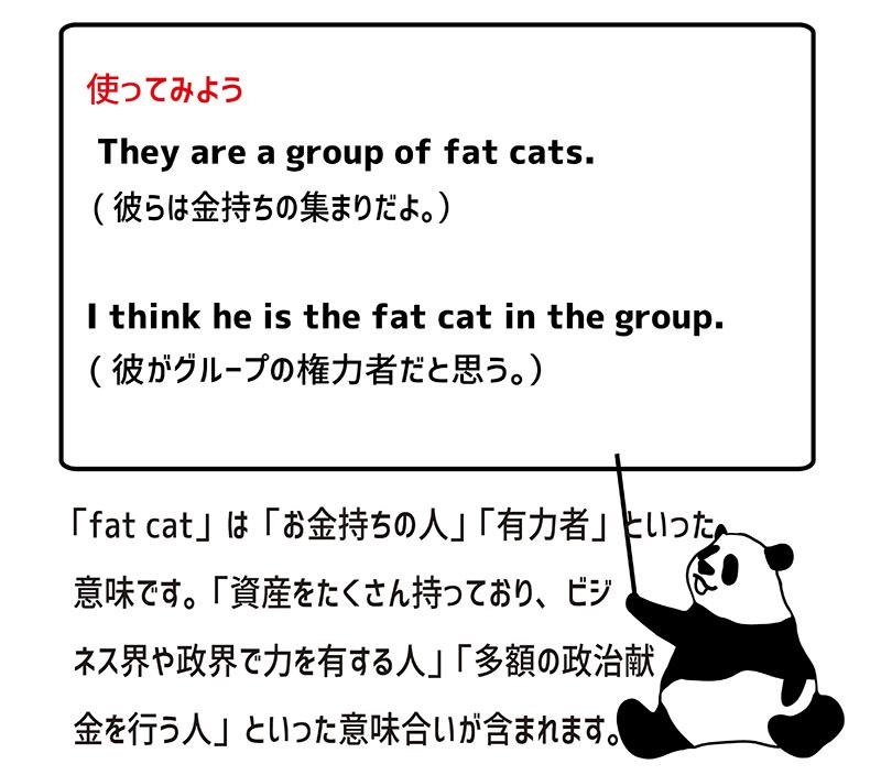 fat catの使い方