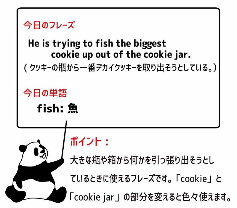 fish upのフレーズ