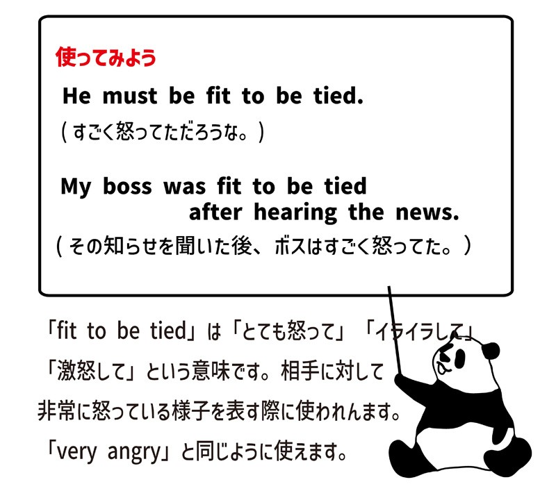 fit to be tiedの使い方