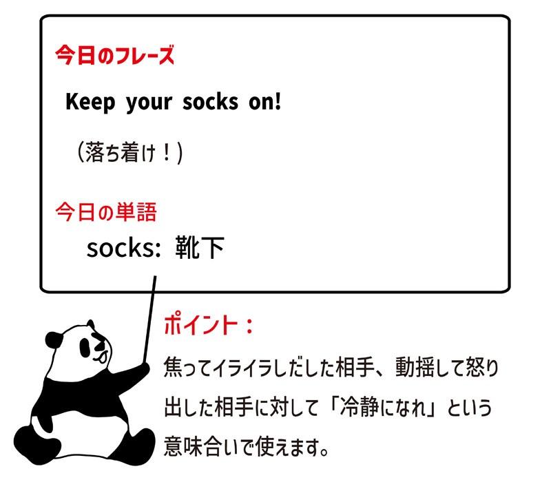 keep one's socks onのフレーズ