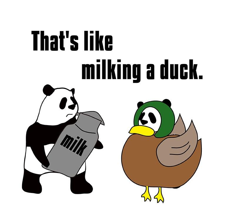 milk a duckのパンダの絵