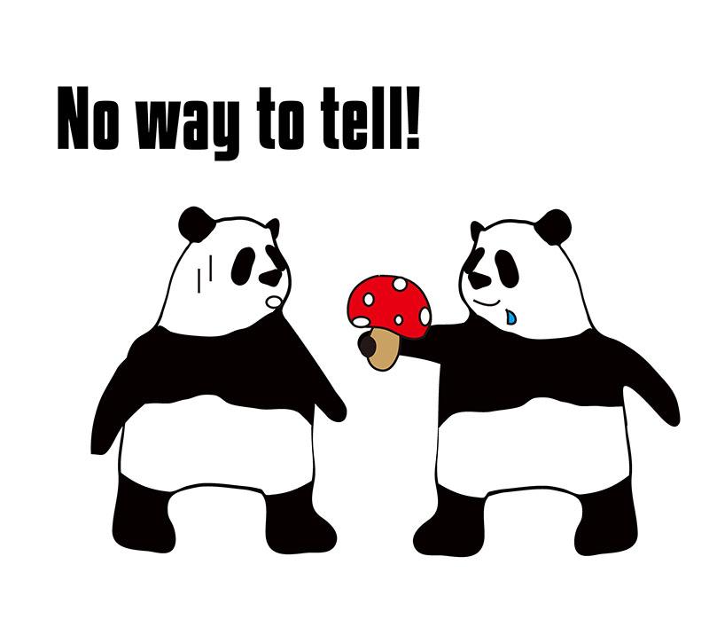No way to tellのパンダの絵