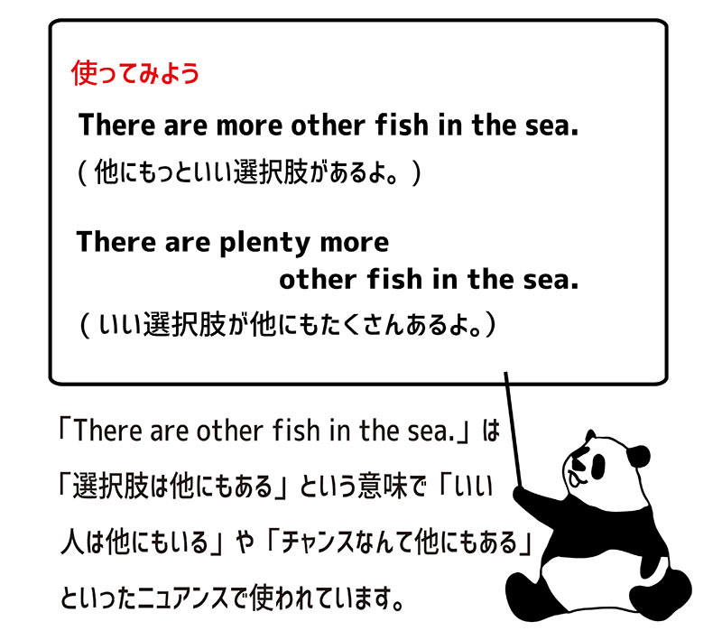 there are other fish in the sea.の使い方