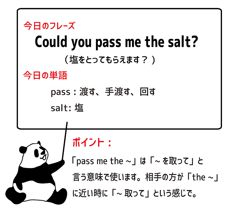 Could you pass me the salt?のフレーズ
