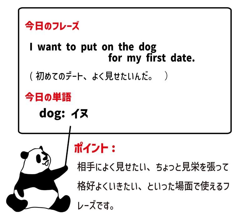 put on the dogのフレーズ