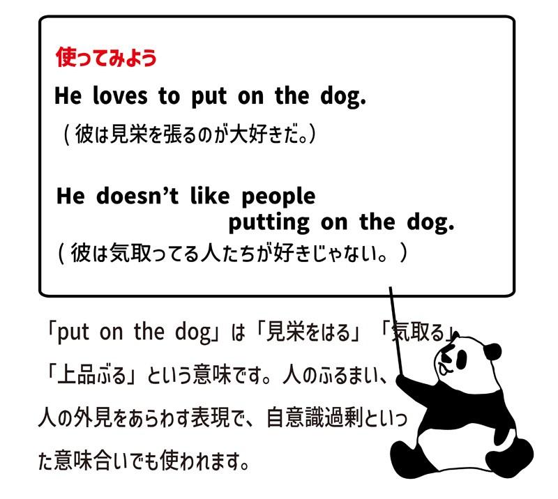 put on the dogの使い方