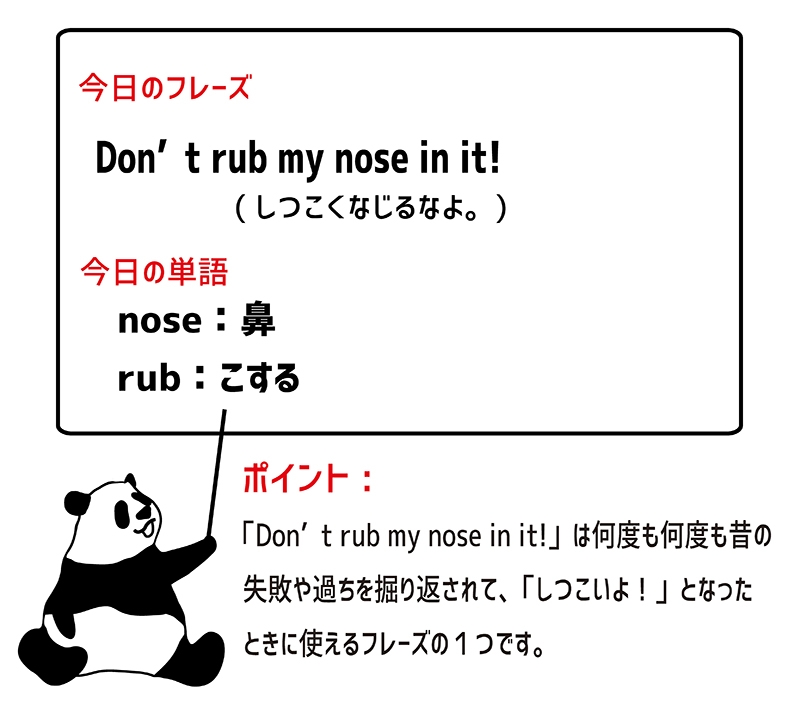 rub one's nose in it のフレーズ