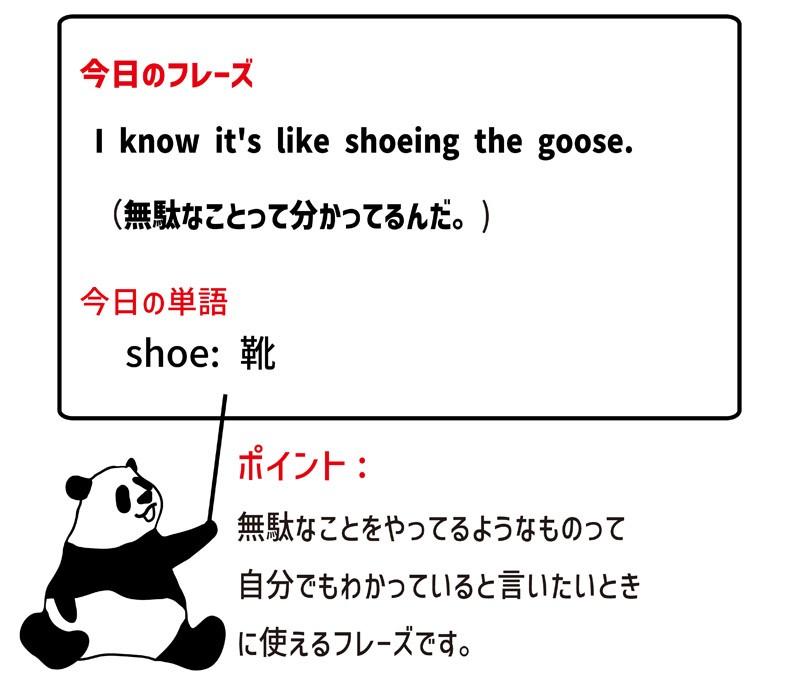 shoethegooseのフレーズ