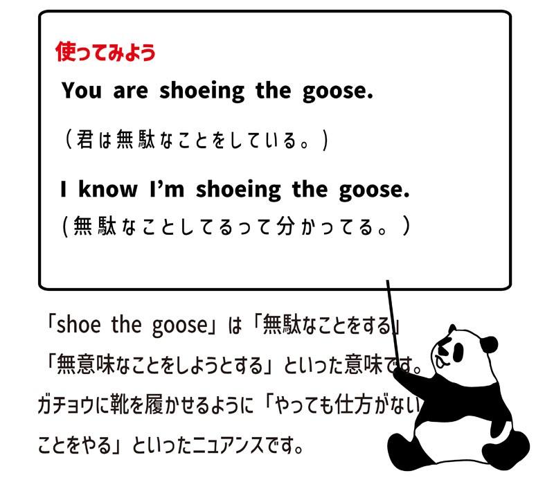 shoethegooseの使い方