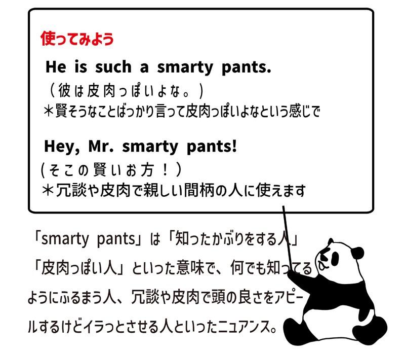smarty pantsの使い方