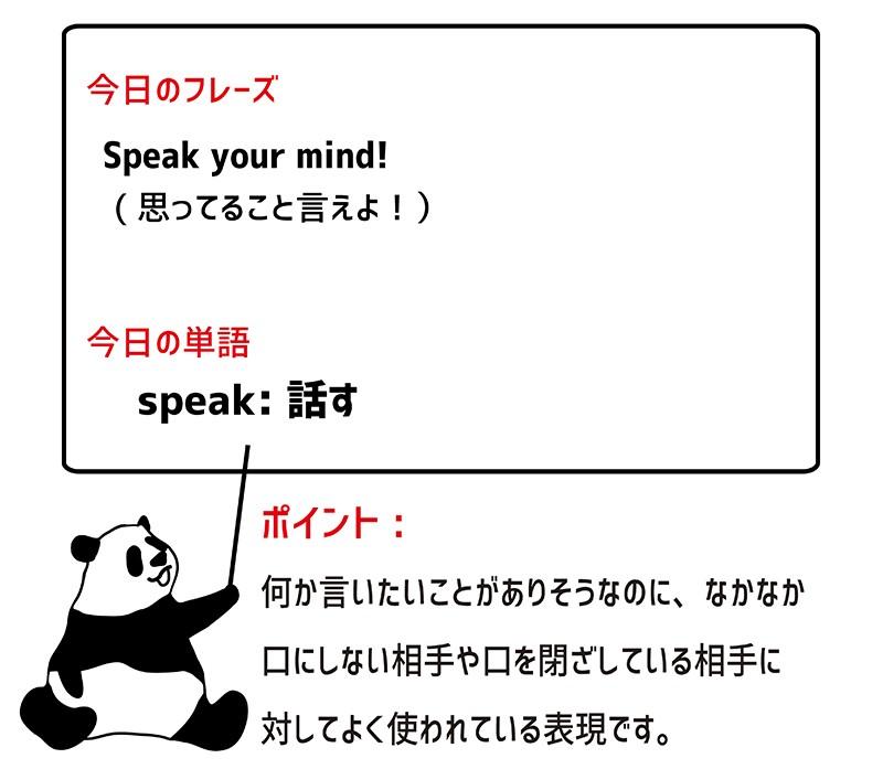 speak one's mindのフレーズ