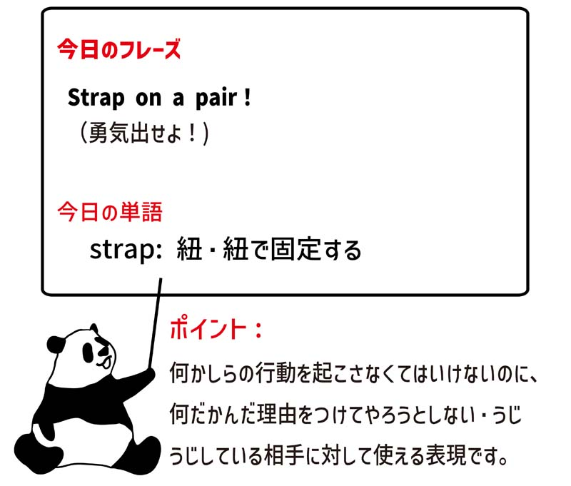 strap on a pairのフレーズ