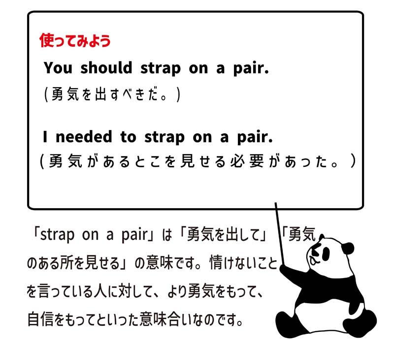 strap on a pairの使い方