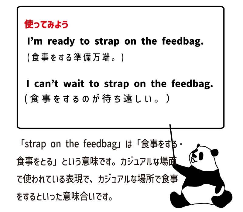 strap on the feedbagの使い方