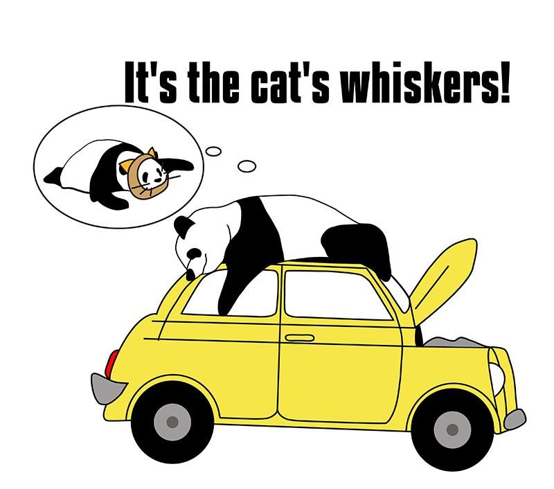 the cat's whiskersのパンダの絵