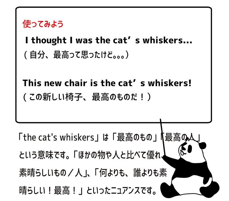 the cat's whiskersの使い方