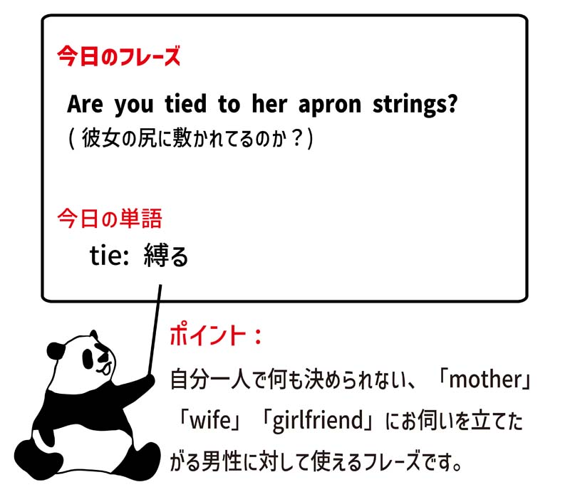 tied to (one's) apron stringsのフレーズ