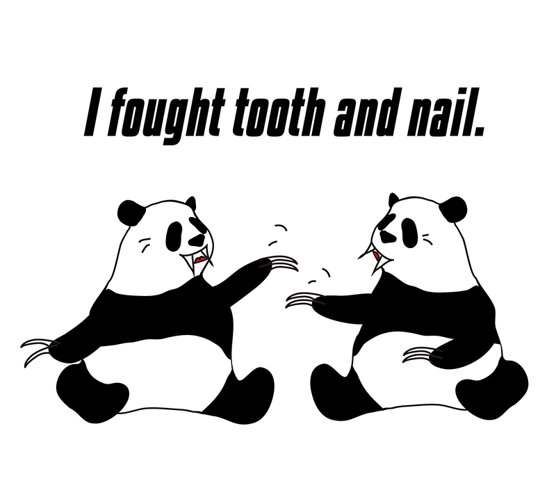 fight tooth and nailのパンダの絵