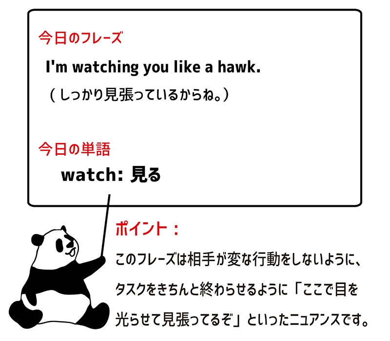 watch like a hawkのフレーズ